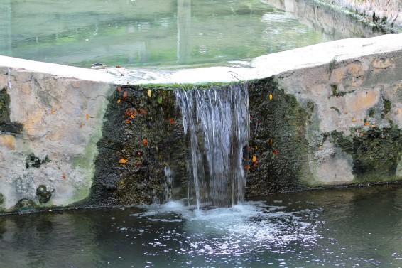 lampasas-river-flowing